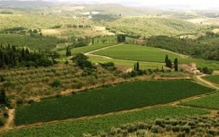 The countryside around Castello di Cacchiano in Tuscany, Italy.
